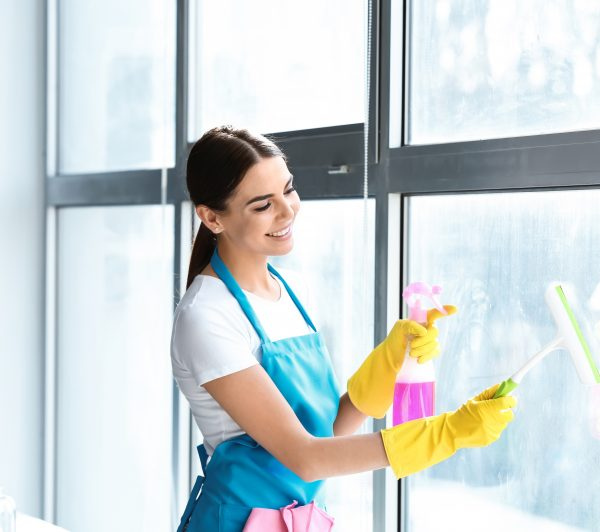 windows_cleaning_zhannas_cleaning